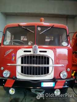 fiat tipper truck need license over 75 ton Foto 9