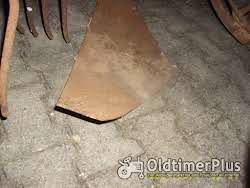 Schmotzer Kartoffelroder Foto 3