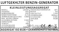 E-Start Benzin Stromerzeuger LZ6500E 6,8 KW Generator Neuware OVP Foto 5