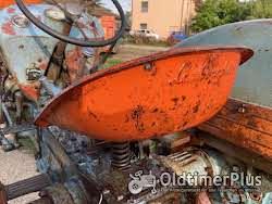 Sonstige Lamborghini trattori 2R preserved patina Foto 2