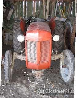 Ferguson TEF 20, Diesel, Vierzylinder