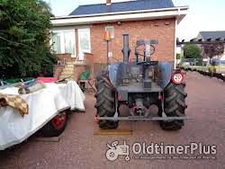 LANZ Lanz Bulldog Type D 9506 Gloeikop  foto 3