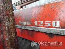 Schlüter Super 1250 mit Frontlader Foto 7