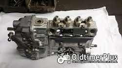 Einspritzpumpen Bosch Einspritzpumpe für Deutz Motor F4L912 F4L913 BF4L913 Bf4L913T F4L812