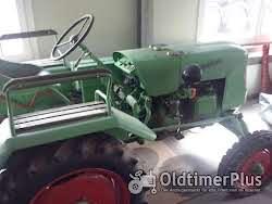 Güldner Traktor Foto 2