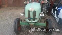 Kramer Traktor KL 300 mit 2 Zylinder Luftgekühlten Deutz Dieselmotor Foto 3