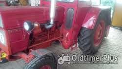 Ursus Universal/UTB 550 Traktor