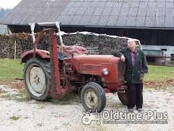 Güldner G 30 S Schnelläufer mit Messerbalken Mähwerk Foto 3