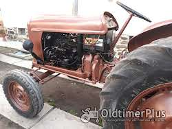 Fiat Someca 312 R Foto 2