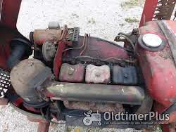 Güldner G 30 S Schnelläufer mit Messerbalken Mähwerk Foto 11