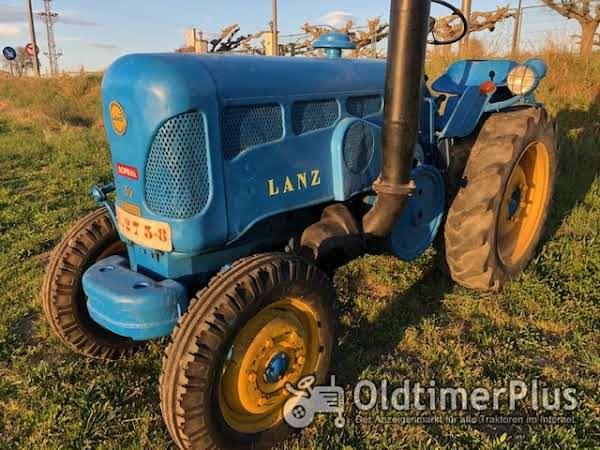 LANZ D3012(vineyard) Foto 1