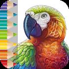 Mandala para colorir icon