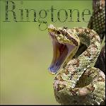 Snake ringtones