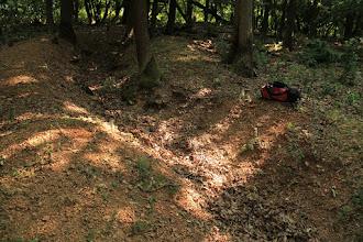 Photo: A Szár-hegy csúcsától DNy-i irányban haladó mesterséges kutatóárok tárja fel a terület változatos földtani képződményeit