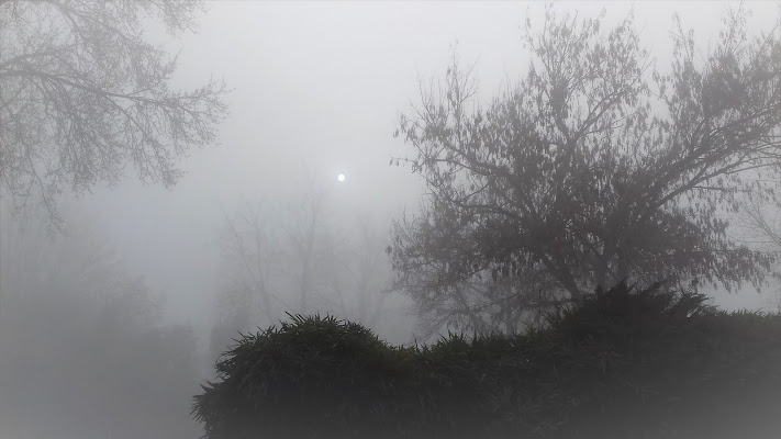 Sole bianco di pattylane