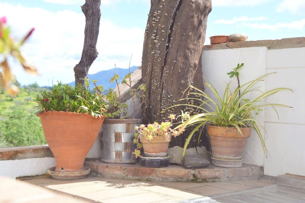 bijzonder-overnachten-andalusie-bergen-malaga
