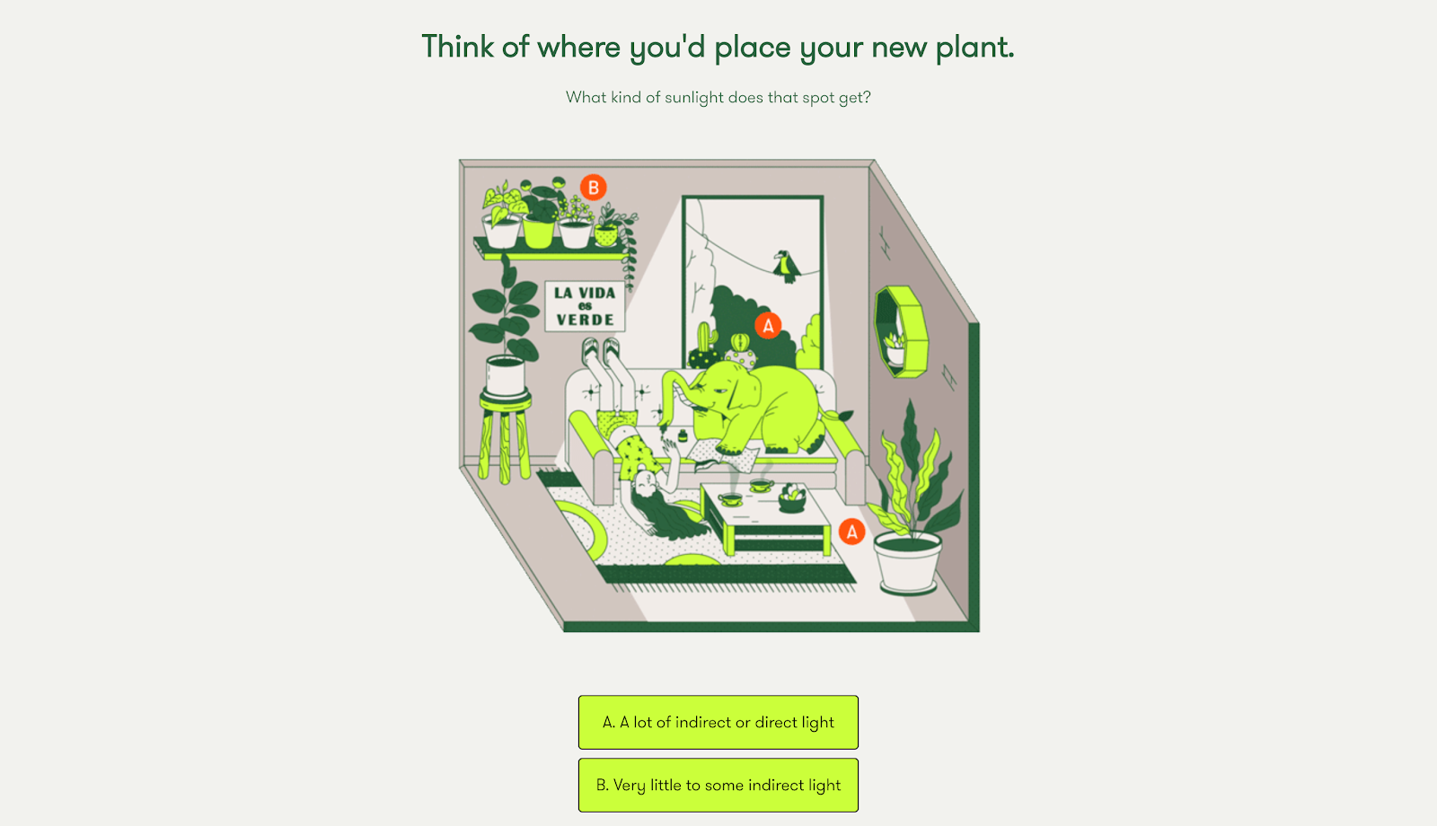 Screenshot of Rooted's plant finder quiz