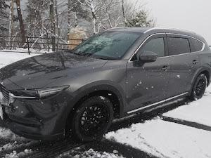 CX-8  XD L package AWD H30年式 のカスタム事例画像 ゆうさんの2018年12月28日11:54の投稿