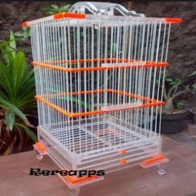 Модель Bird Cage