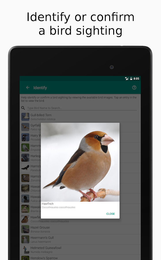 Happy Birding Journal- screenshot