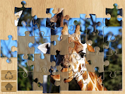 Photo Puzzles game for Android screenshot