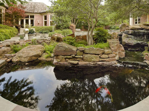 Download fish pond design ideas for pc for Koi pond size requirements