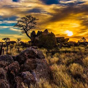 UPINGTON by Theuns de Bruin - Landscapes Sunsets & Sunrises ( upington )