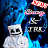 DJ Marshmello Song + Lyrics