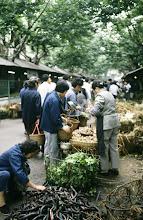 Photo: 10968 上海/自由市場/野菜