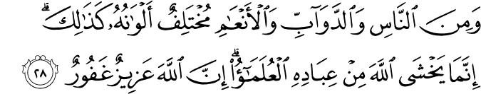 fathir35_28.png