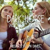 Dark Horse (Acoustic Cover) Feat. Jaclyn Davies