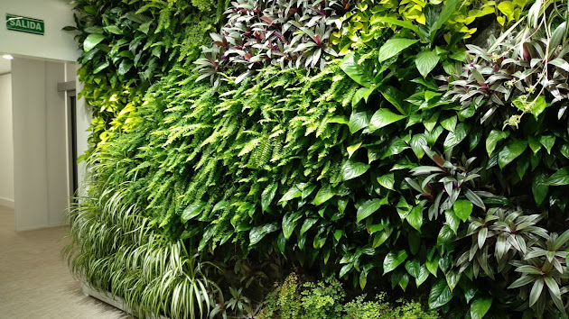 Jardines verticales en ferring