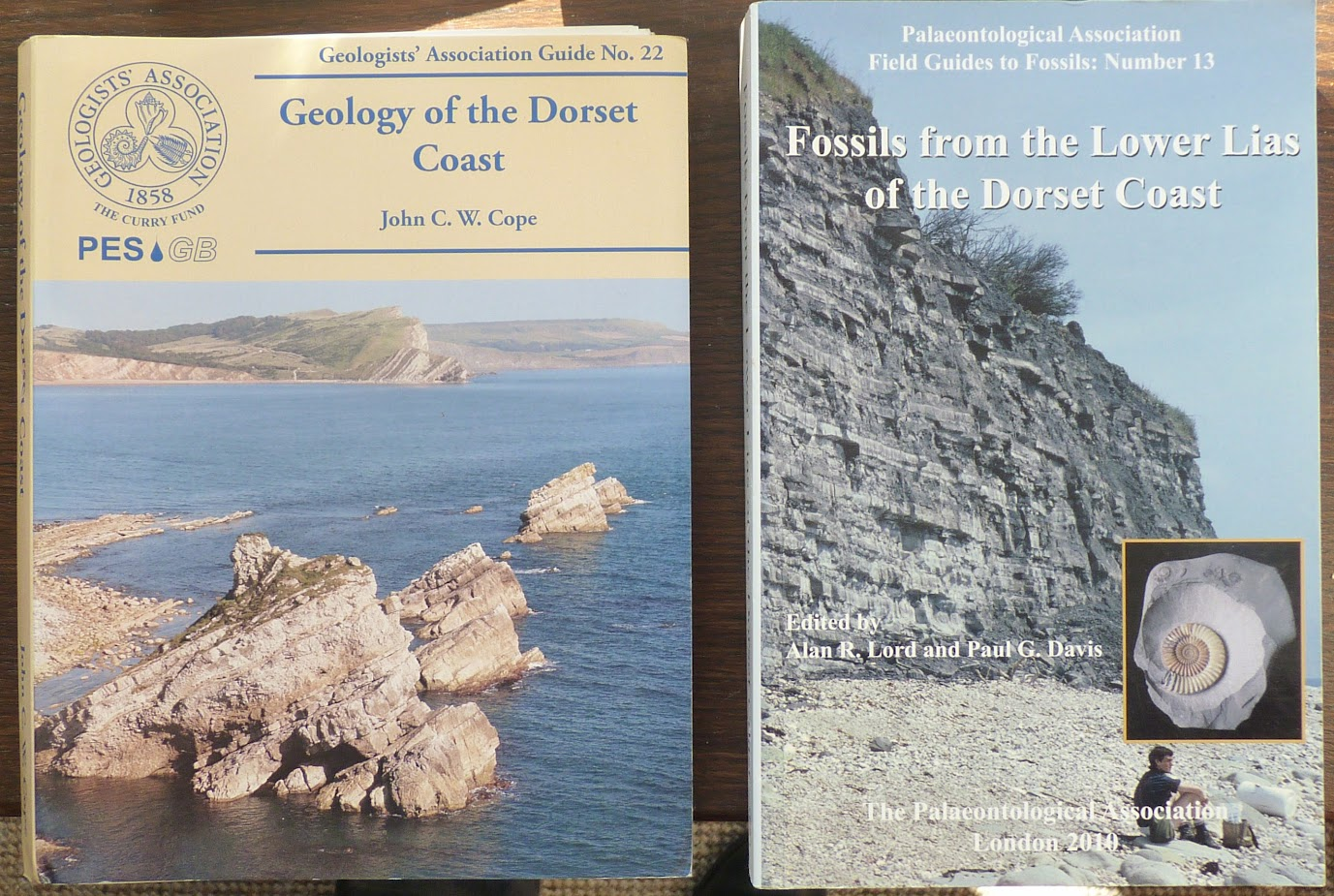 Dorset Field Guides