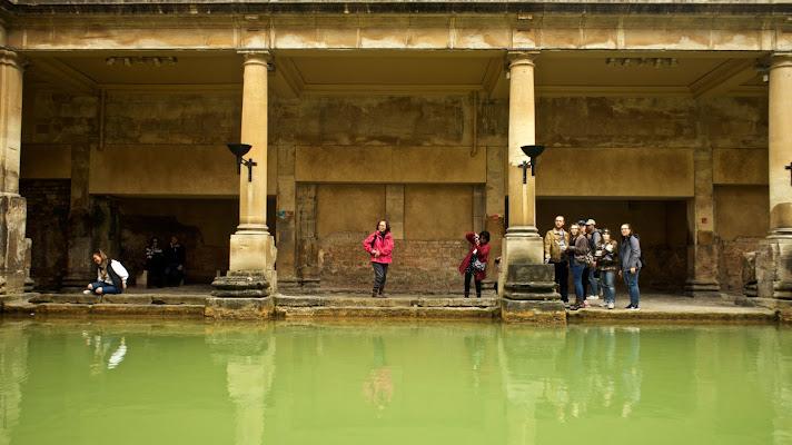 Bath - England di rosa allocco