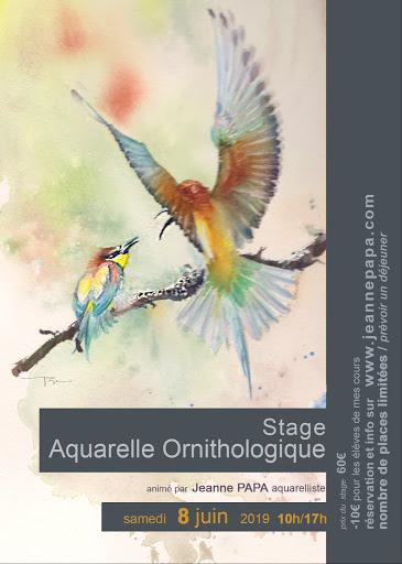 stage aquarelle  ORNITHOLOGIQUE Jeanne PAPA 8  juin 2019