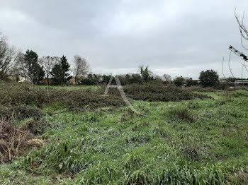 terrain à Sainte-Radegonde (17)