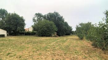 terrain à Saint-Pierre-d'Amilly (17)