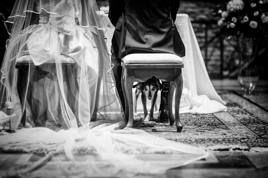 Wedding photographer Barbara Fabbri (fabbri). Photo of 08.10.2019