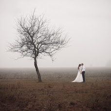 Wedding photographer Natalya Zilinskaya (NataLiz). Photo of 25.12.2013