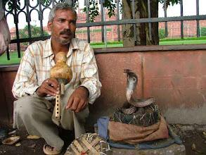 Photo: Old Delhi - Cobra foto? Ok, but 50 Rs