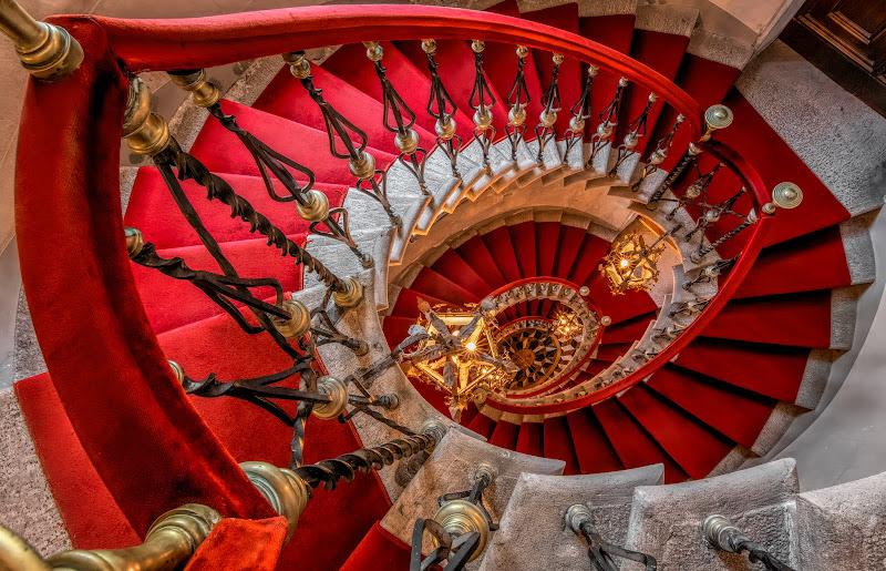 Red Carpet di Sara Jazbar