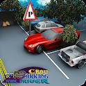 Crazy Car Parking-Stunt Driver icon