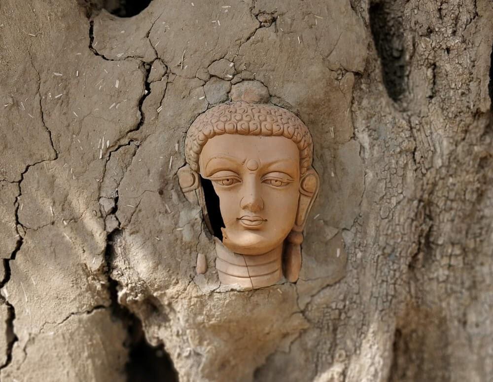buddha+saral+shambhala+ecohut+chawandiya+pushkar+rajasthan