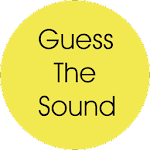 Guess That Sound Icon