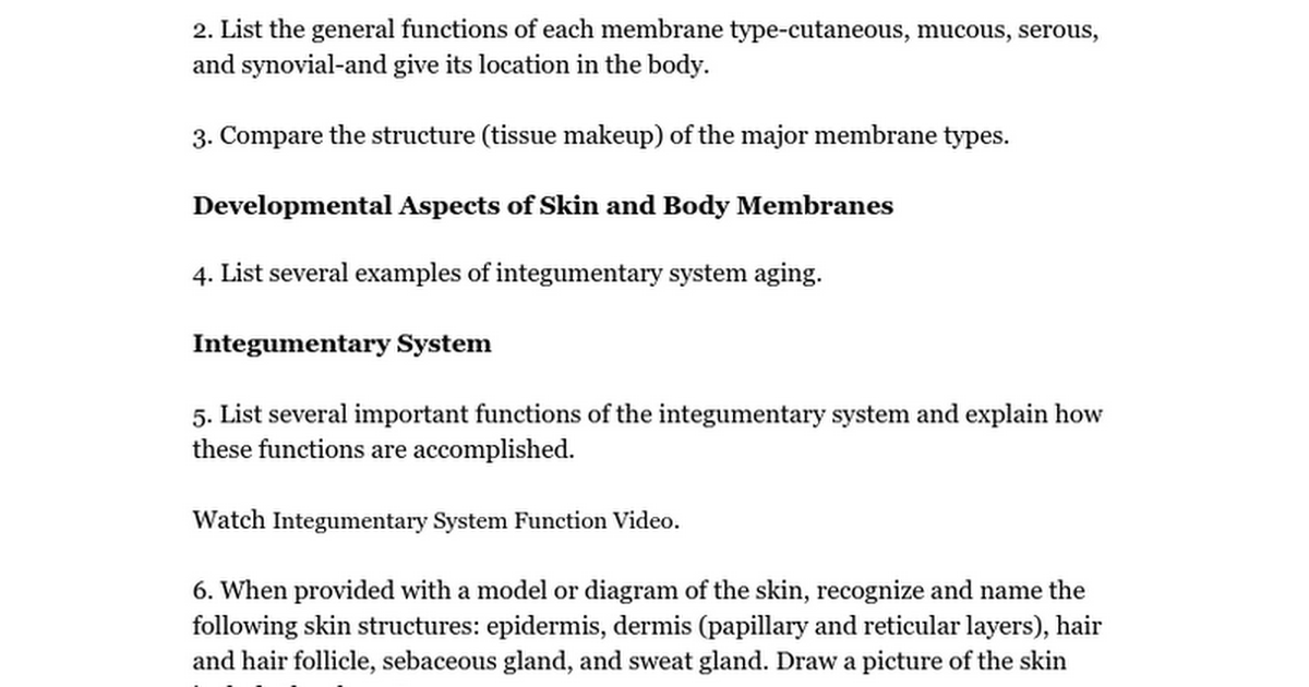 Integumentary System Review Google Docs