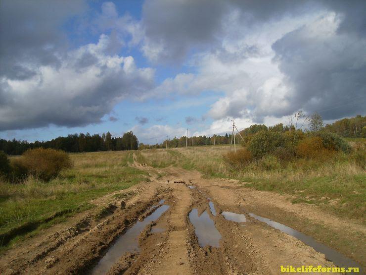Недалеко от деревни Петушки в Смоленской области