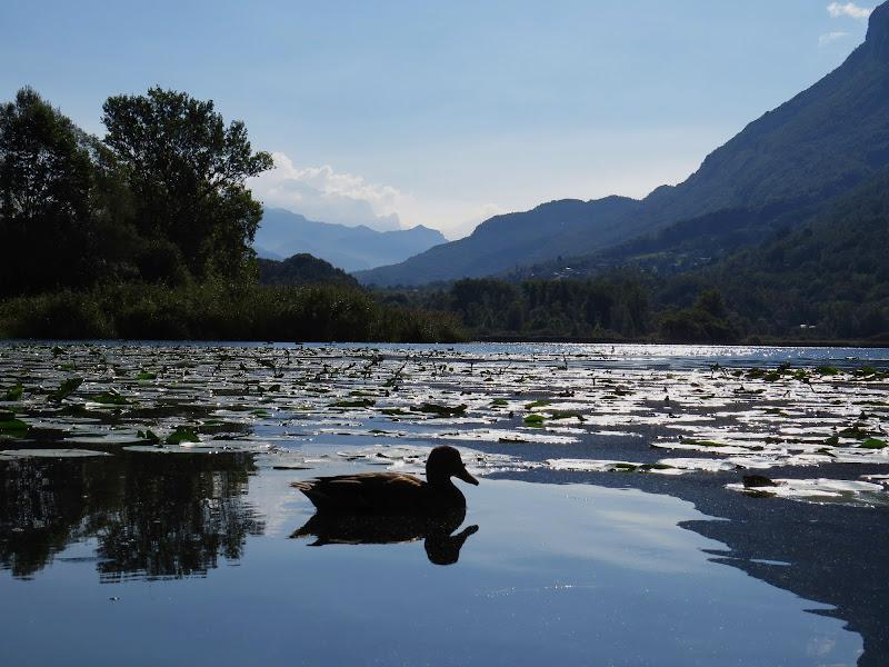riserva naturale lago di Piano di paul mal