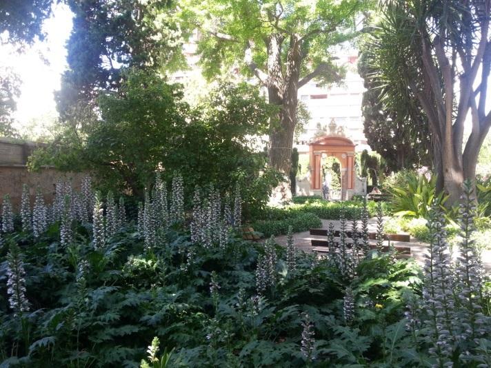 C:\Users\Gonzalo\Desktop\Nova Dimensio\Ver la ciudad\Jardín de Monforte\20170520_121010.jpg