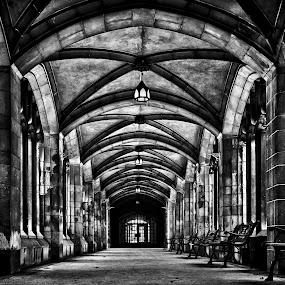 University of Toronto Knox College Cloister No 1 by Brian Carson - Buildings & Architecture Public & Historical ( interior, old, photograph, gothic, arch, brian carson, toronto, street, college, stone, door, architecture, historic, city, aged, arc, perspective, the learning curve photography, light, structure, canada, texture, cloister, landmark, frame, environment, window, ceiling, column, canadian, lines, archway, www.thelearningcurve.ca, wall, culture, famous, concept, doorway, monochrome, black and white, brick, geometric, u of t, photography, entrance, university of toronto, monument, classic, downtown, icon, building, knox college, university, vintage, black & white, ontario, photo, history, urban, pattern, arches, background, foto, medieval, design, pillars,  )