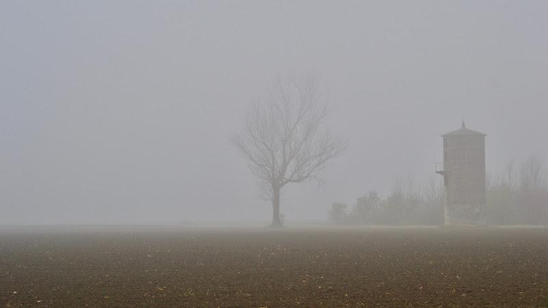 La nebbia della bassa di giuseppedangelo